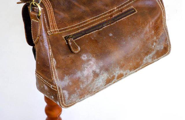 Cách bảo quản túi xách da bị mốc